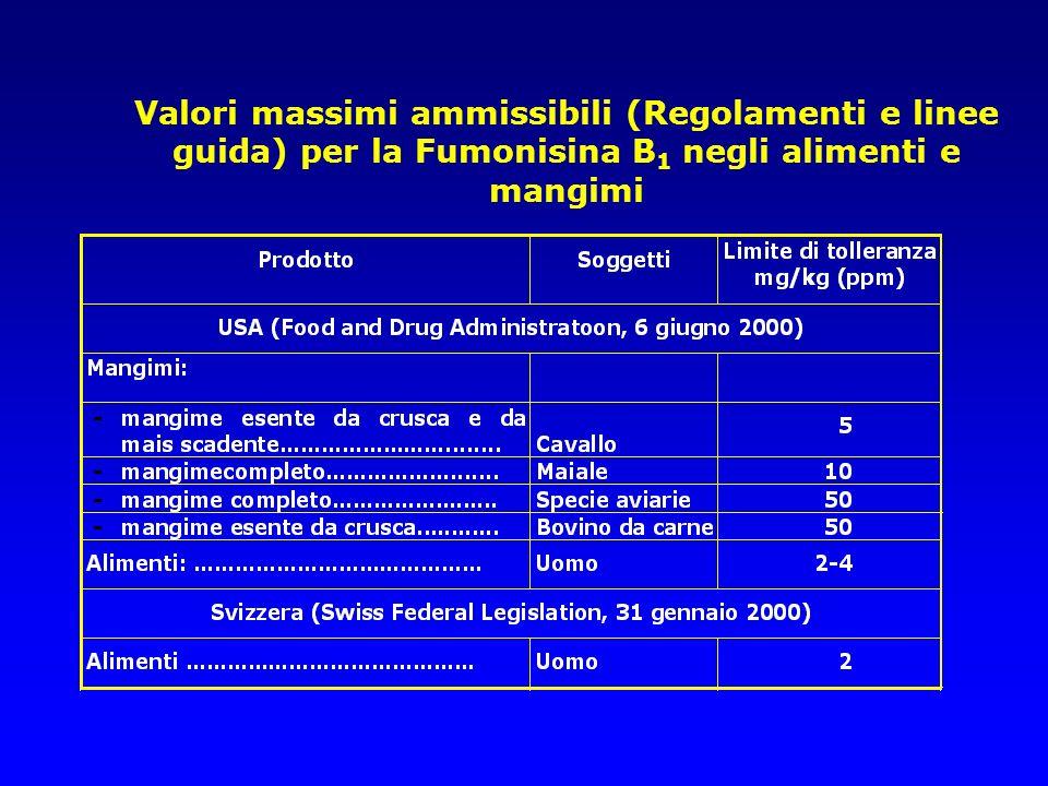Valori massimi ammissibili (Regolamenti e linee guida) per la Fumonisina B1 negli alimenti e mangimi