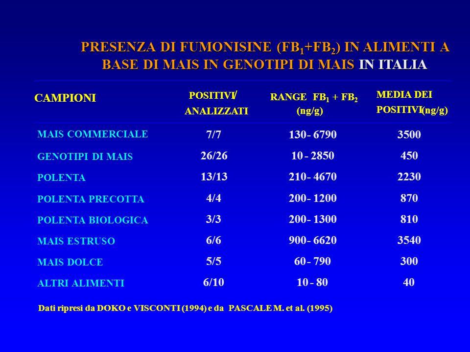 PRESENZA DI FUMONISINE (FB1+FB2) IN ALIMENTI A BASE DI MAIS IN GENOTIPI DI MAIS IN ITALIA