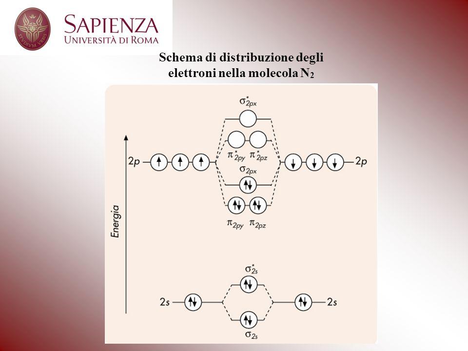 Schema di distribuzione degli elettroni nella molecola N2