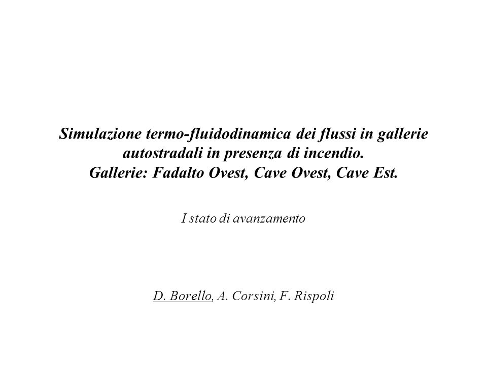 I stato di avanzamento D. Borello, A. Corsini, F. Rispoli