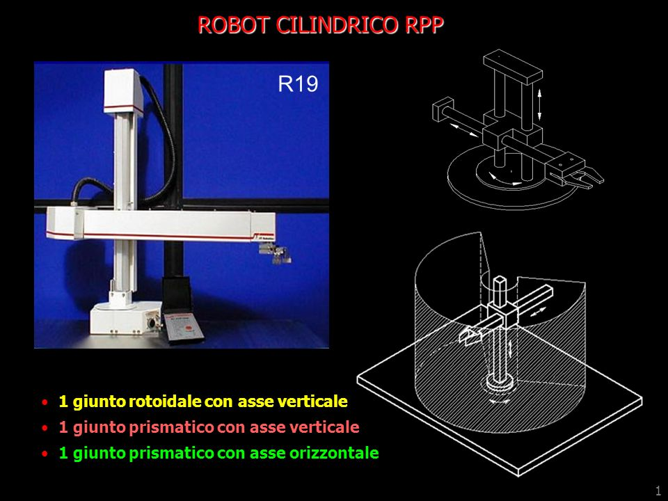 ROBOT CILINDRICO RPP R19 1 giunto rotoidale con asse verticale