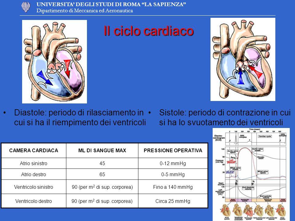 Il ciclo cardiaco Diastole: periodo di rilasciamento in cui si ha il riempimento dei ventricoli.