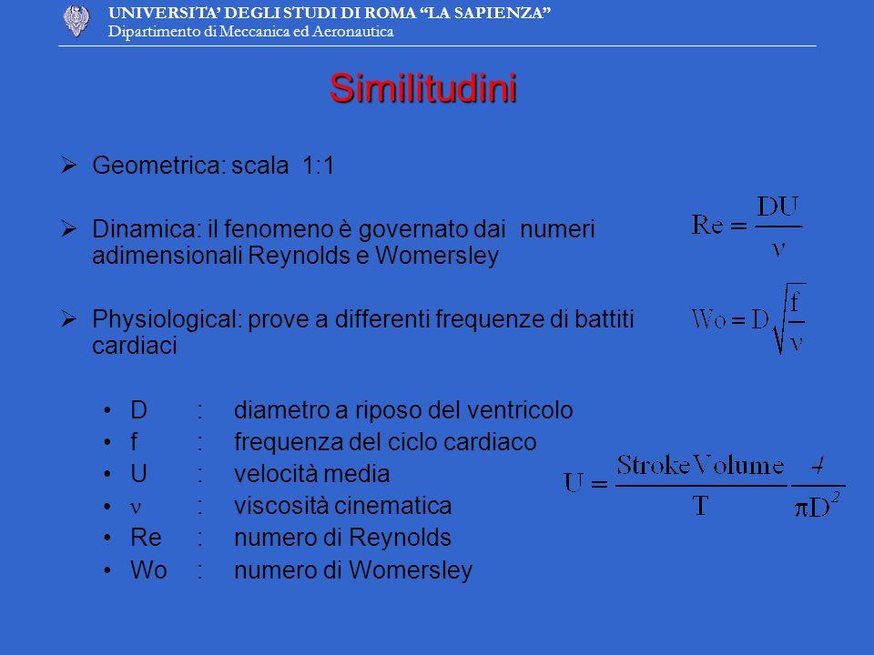 Similitudini Geometrica: scala 1:1