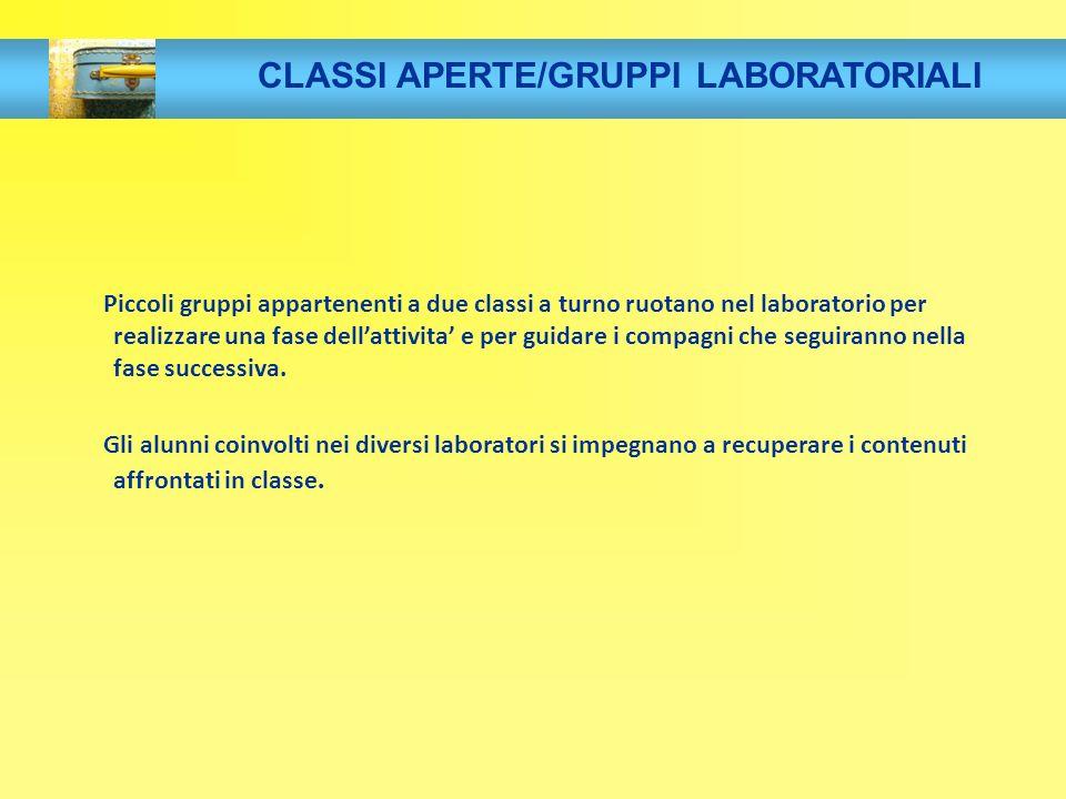 CLASSI APERTE/GRUPPI LABORATORIALI
