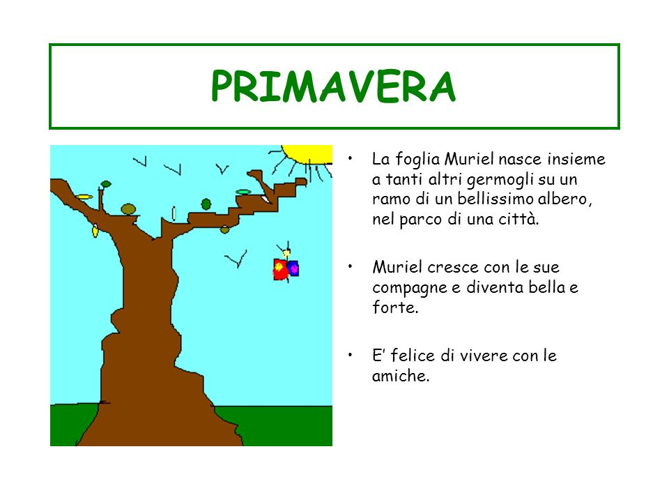 PRIMAVERA La foglia Muriel nasce insieme a tanti altri germogli su un ramo di un bellissimo albero, nel parco di una città.