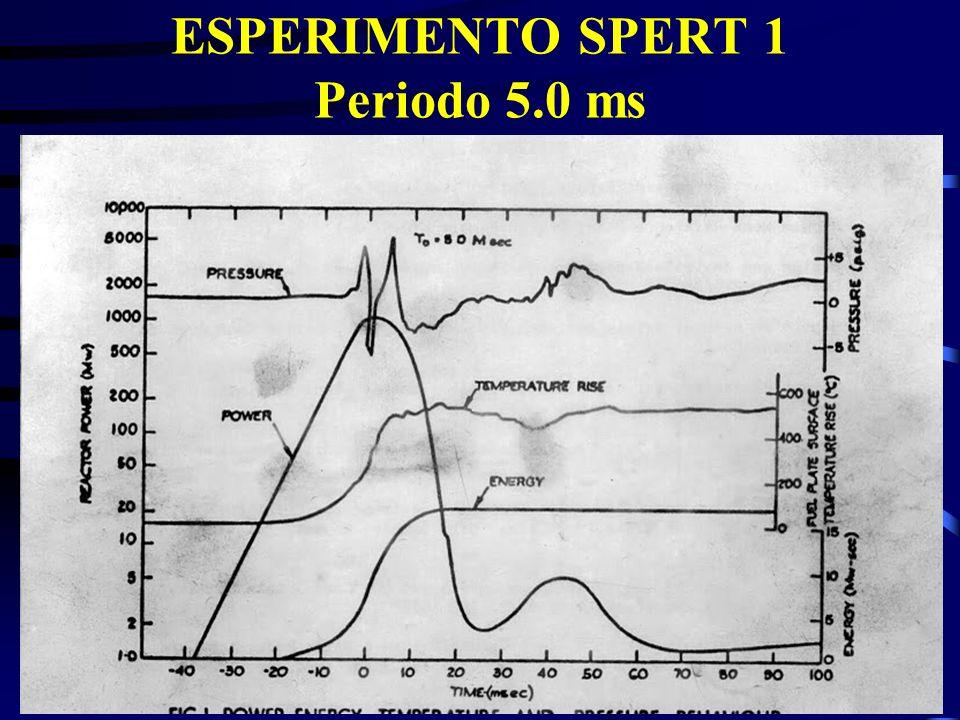 ESPERIMENTO SPERT 1 Periodo 5.0 ms