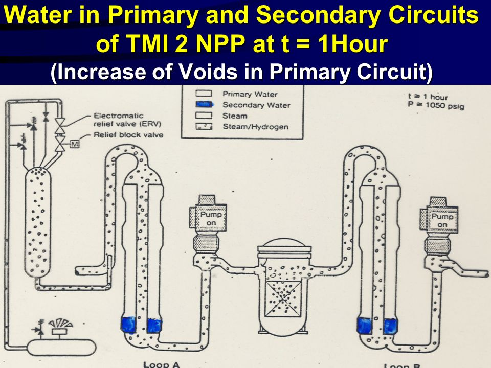 Water in Primary and Secondary Circuits of TMI 2 NPP at t = 1Hour (Increase of Voids in Primary Circuit)