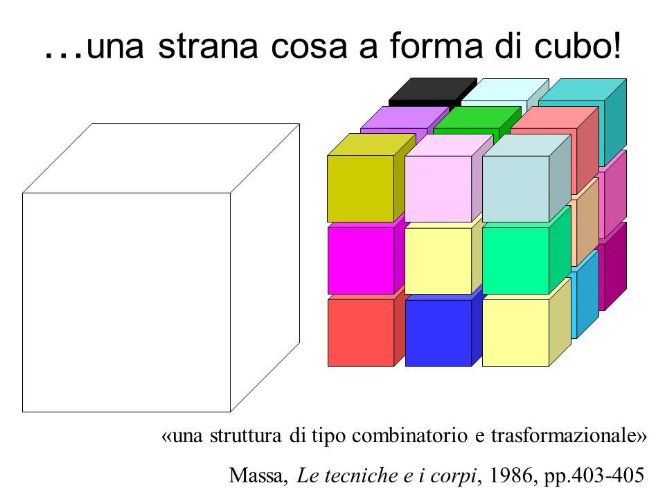 …una strana cosa a forma di cubo!