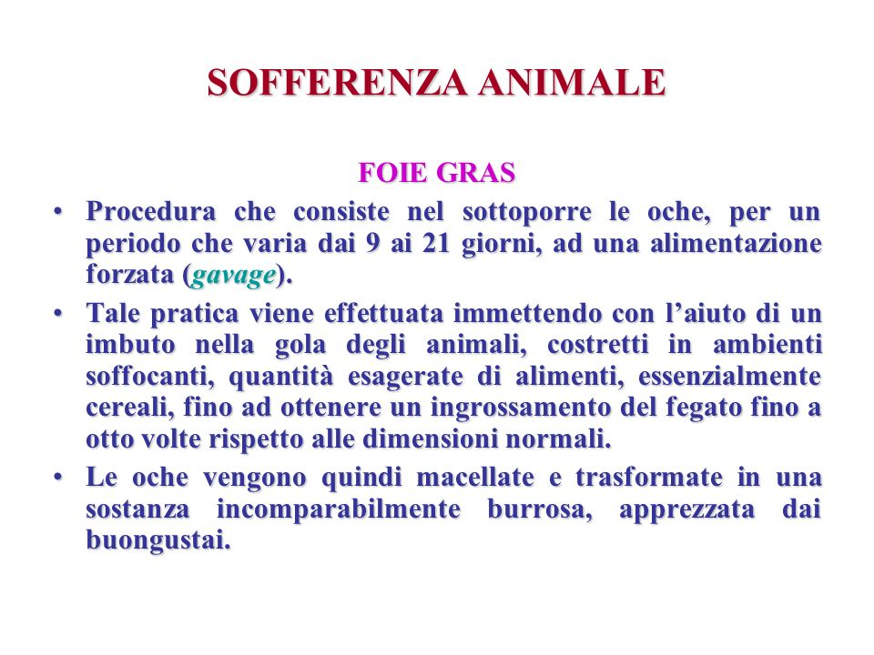 SOFFERENZA ANIMALE FOIE GRAS