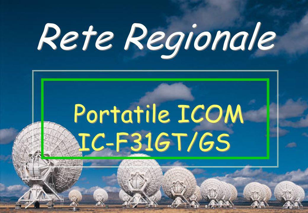 Rete Regionale Portatile ICOM IC-F31GT/GS