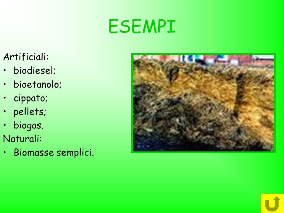 ESEMPI Artificiali: biodiesel; bioetanolo; cippato; pellets; biogas.