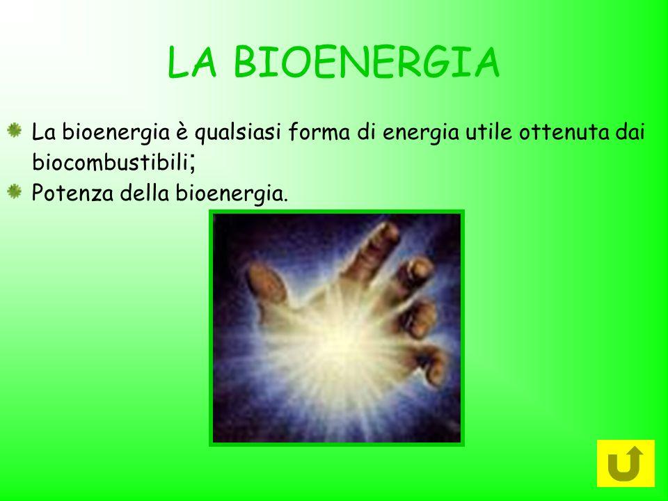 LA BIOENERGIA La bioenergia è qualsiasi forma di energia utile ottenuta dai biocombustibili; Potenza della bioenergia.