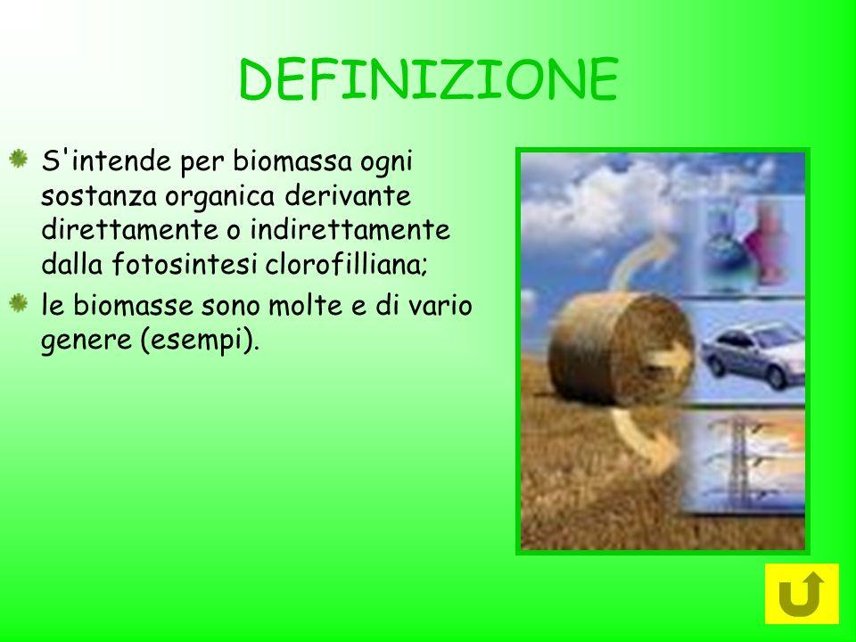 DEFINIZIONE S intende per biomassa ogni sostanza organica derivante direttamente o indirettamente dalla fotosintesi clorofilliana;