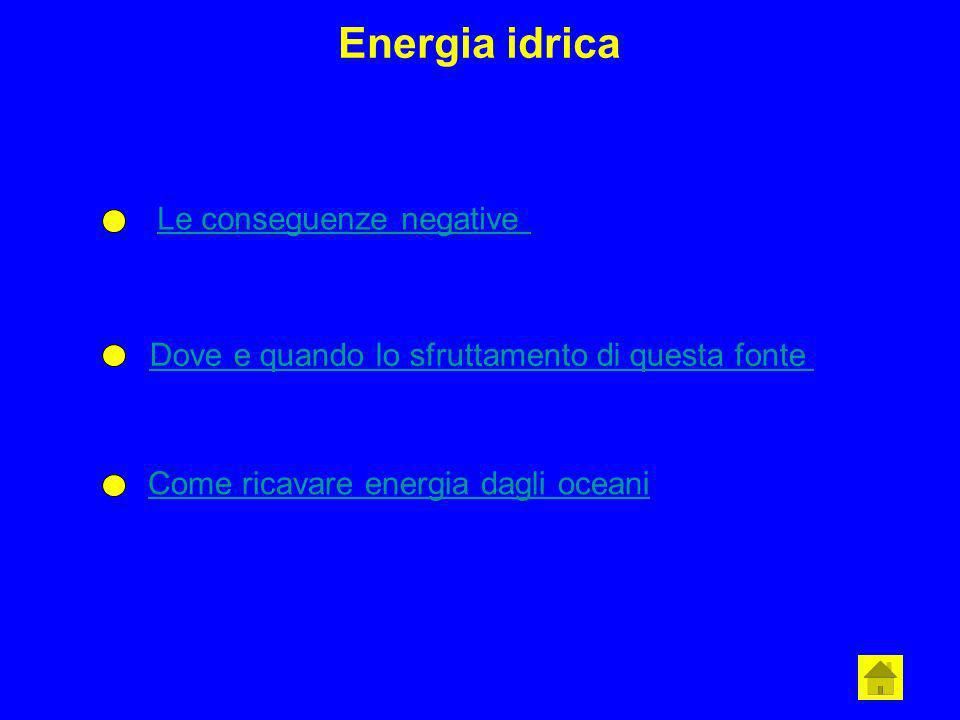 Energia idrica Le conseguenze negative