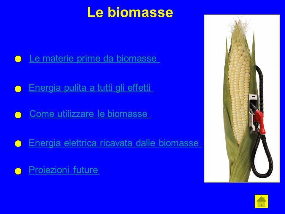 Le biomasse Le materie prime da biomasse