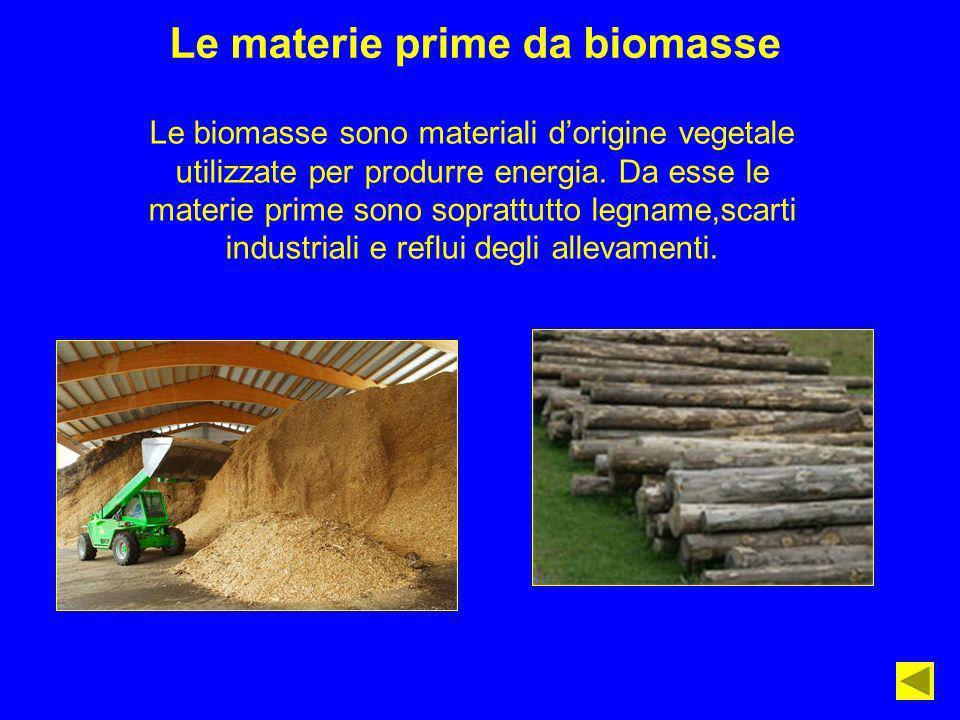 Le materie prime da biomasse