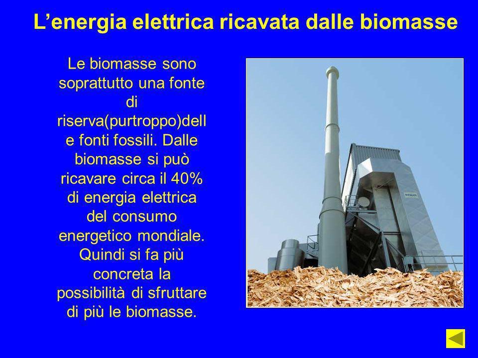 L'energia elettrica ricavata dalle biomasse