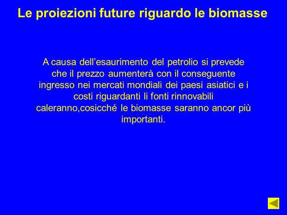 Le proiezioni future riguardo le biomasse