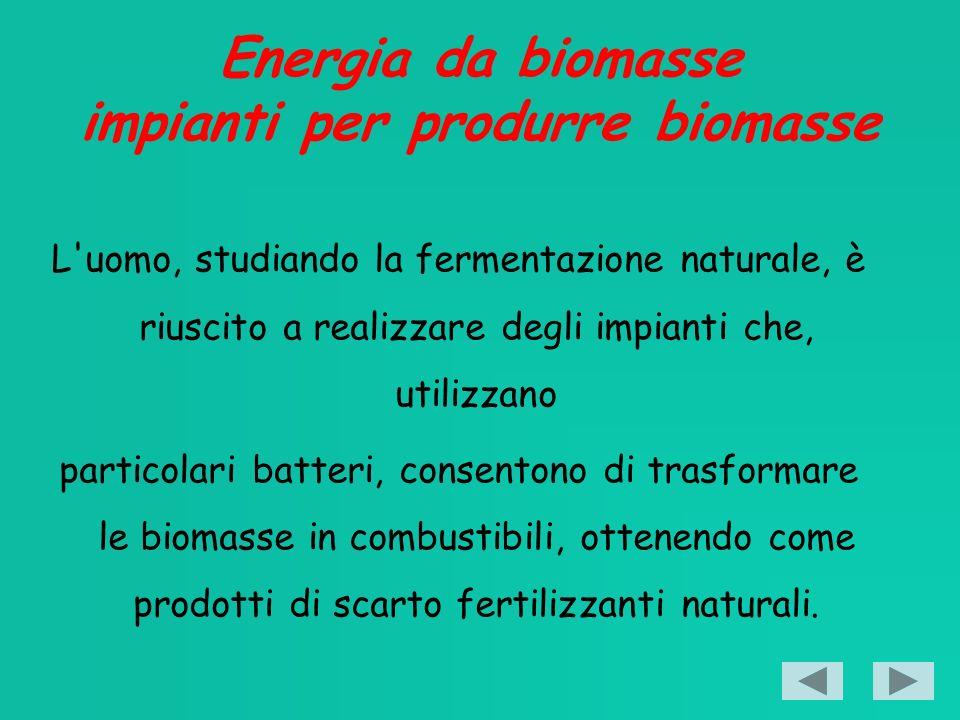 Energia da biomasse impianti per produrre biomasse