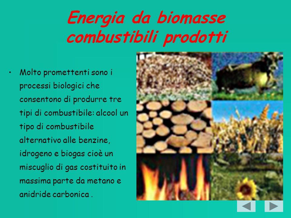 Energia da biomasse combustibili prodotti