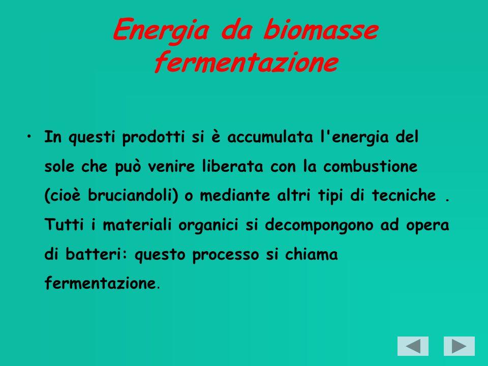 Energia da biomasse fermentazione