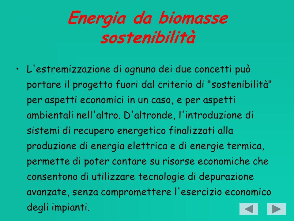 Energia da biomasse sostenibilità