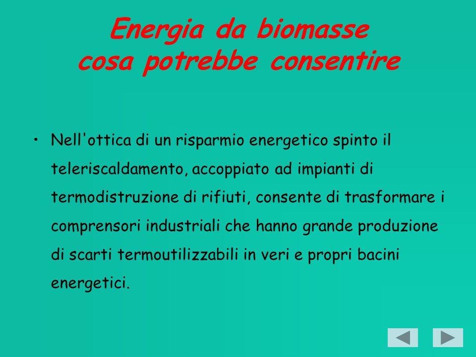 Energia da biomasse cosa potrebbe consentire