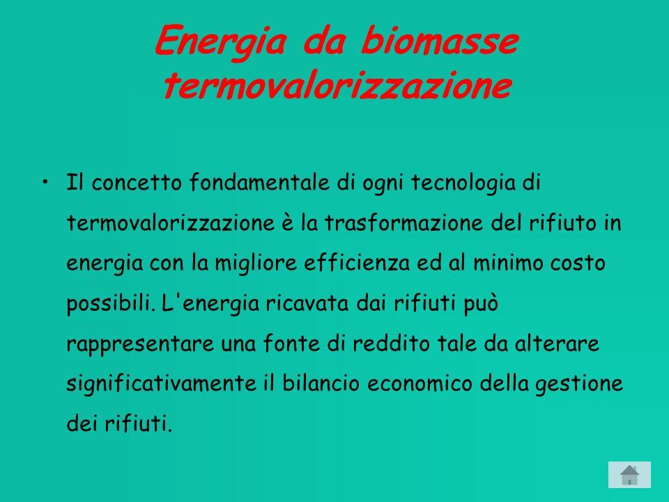 Energia da biomasse termovalorizzazione
