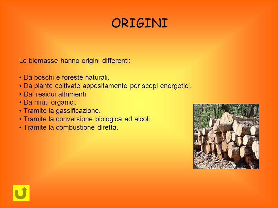 ORIGINI Le biomasse hanno origini differenti: