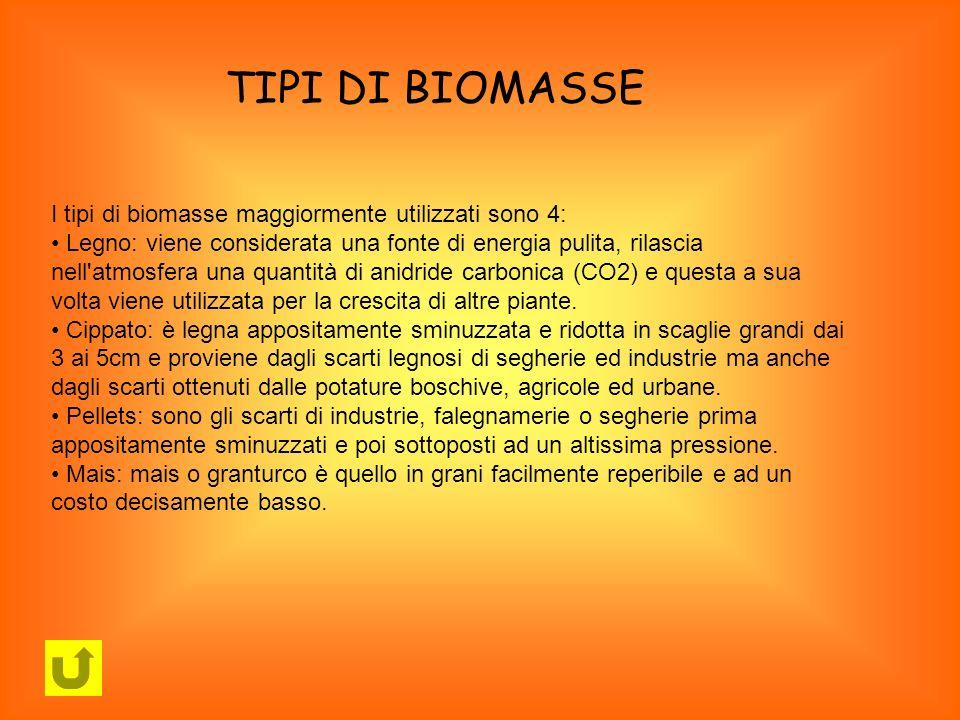 TIPI DI BIOMASSE I tipi di biomasse maggiormente utilizzati sono 4: