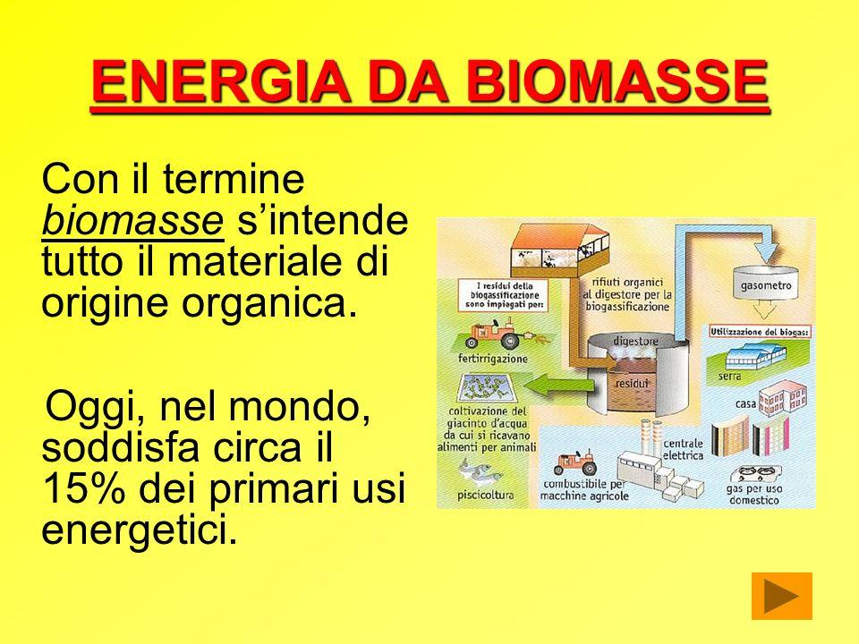 ENERGIA DA BIOMASSE Con il termine biomasse s'intende tutto il materiale di origine organica.