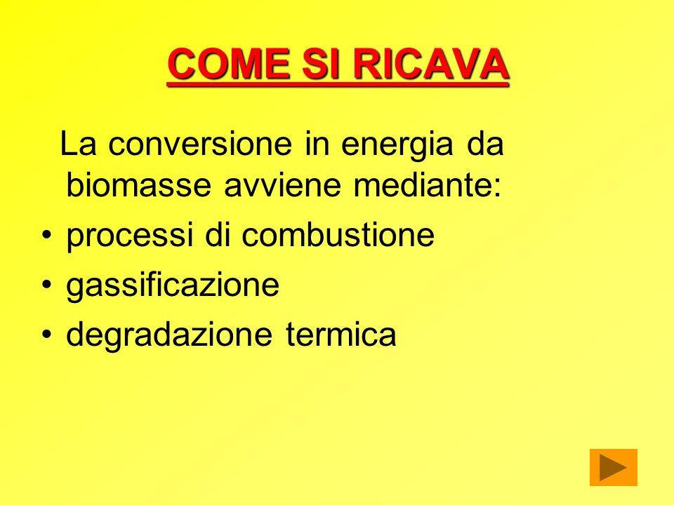 COME SI RICAVA La conversione in energia da biomasse avviene mediante: