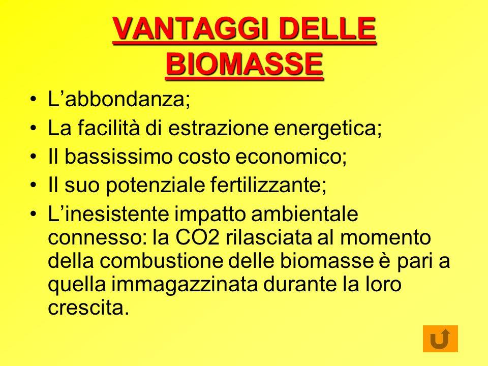 VANTAGGI DELLE BIOMASSE