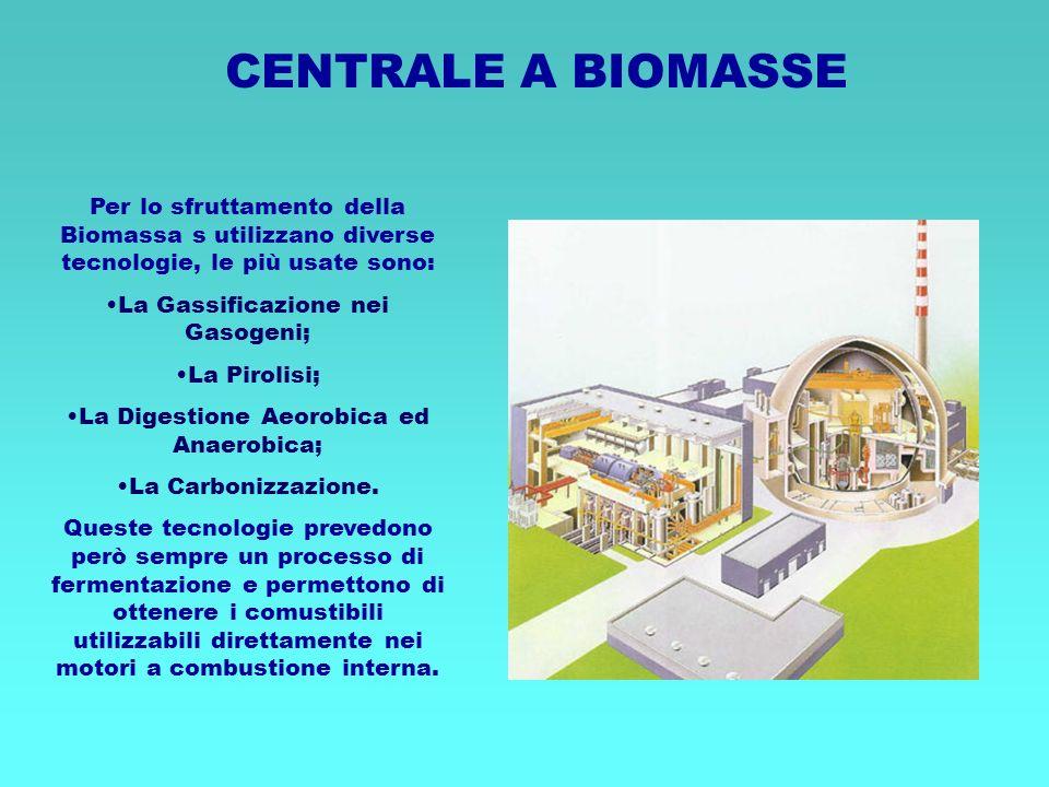 CENTRALE A BIOMASSE Per lo sfruttamento della Biomassa s utilizzano diverse tecnologie, le più usate sono: