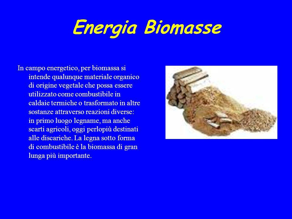 Energia Biomasse INTRODUZIONE