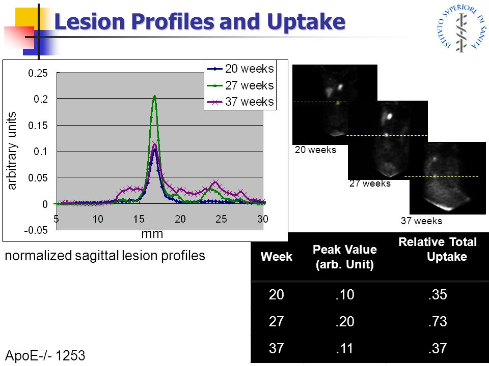 Lesion Profiles and Uptake