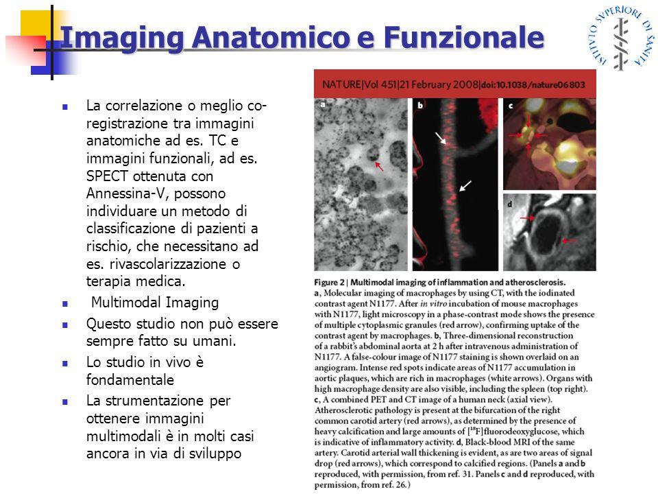 Imaging Anatomico e Funzionale