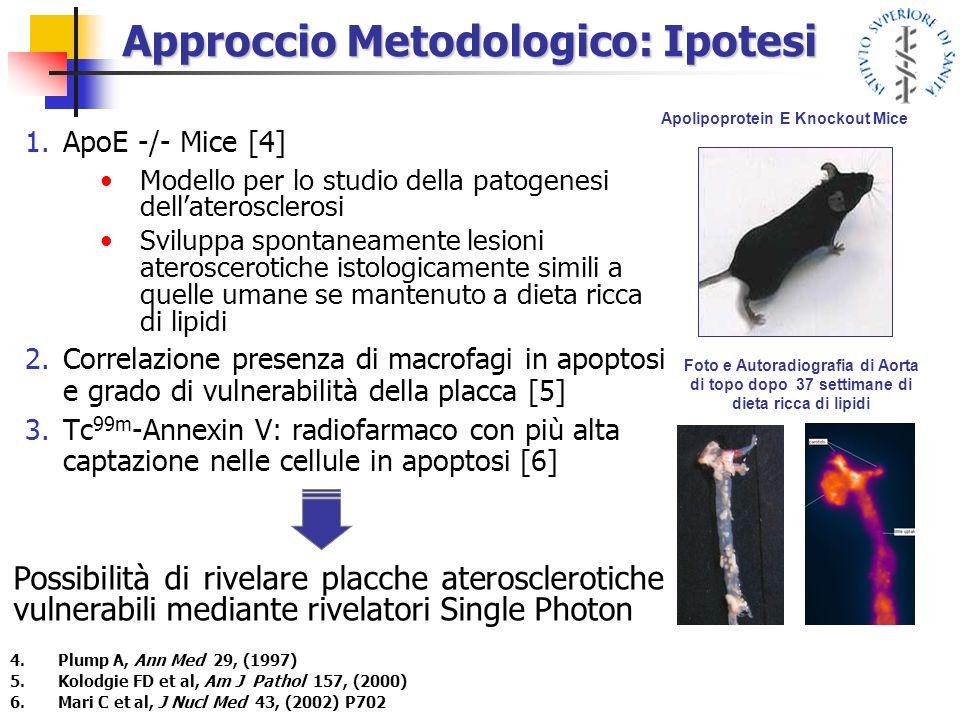 Approccio Metodologico: Ipotesi