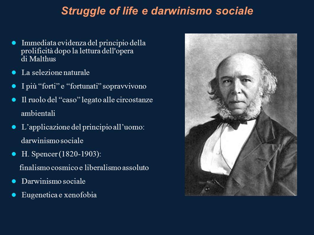 Struggle of life e darwinismo sociale