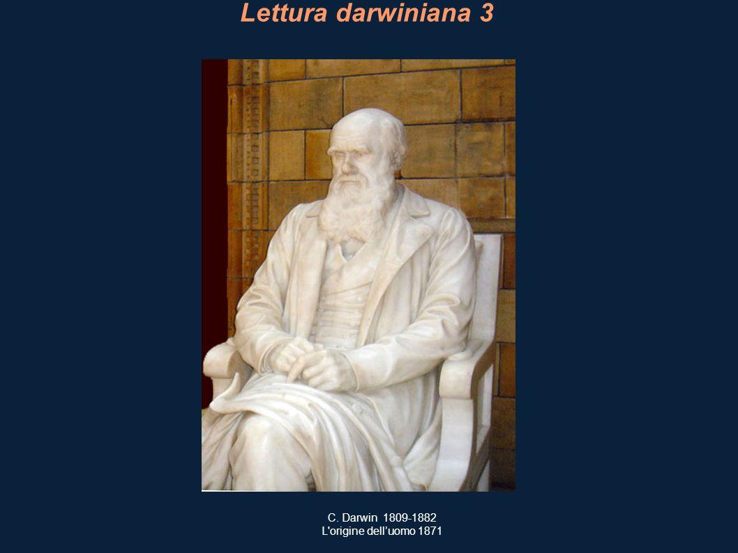 Lettura darwiniana 3 C. Darwin 1809-1882 L origine dell'uomo 1871