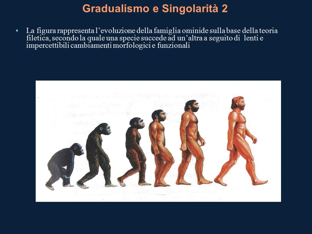 Gradualismo e Singolarità 2