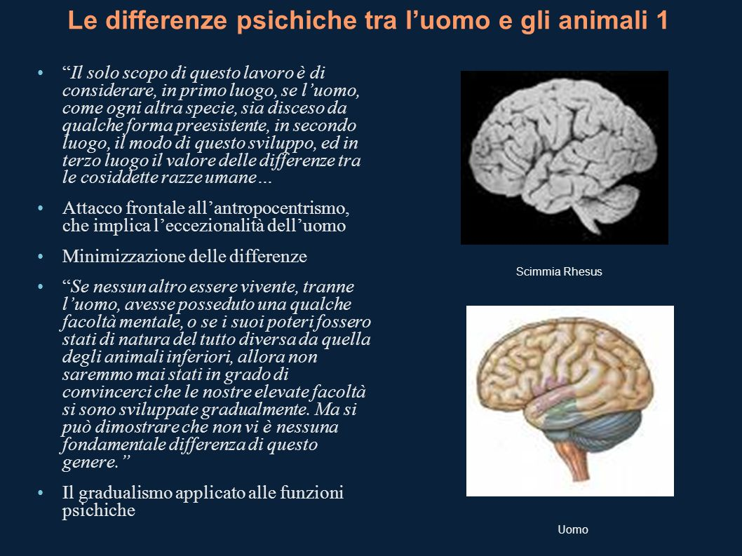 Le differenze psichiche tra l'uomo e gli animali 1