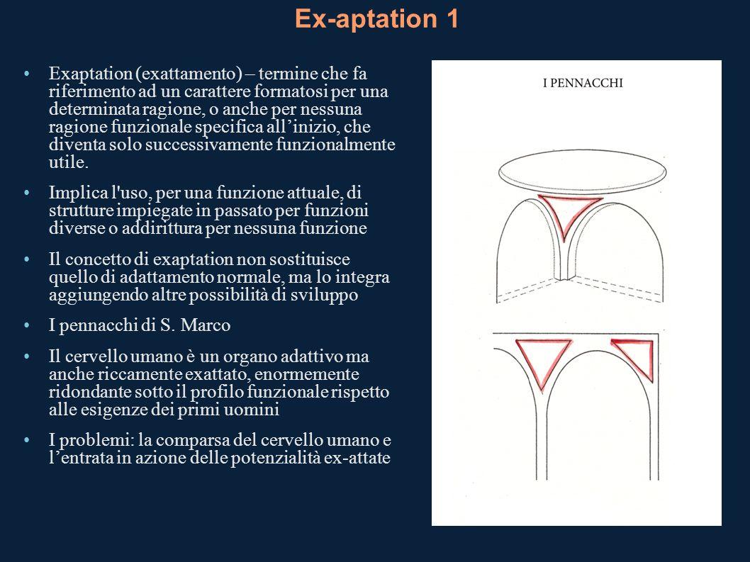 Ex-aptation 1