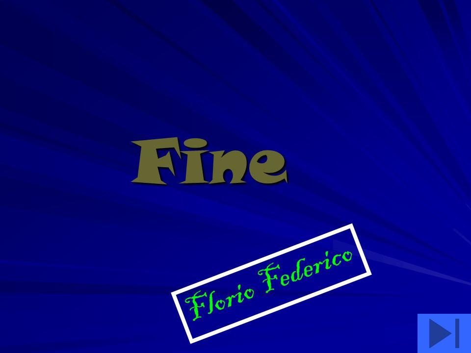 Fine Florio Federico