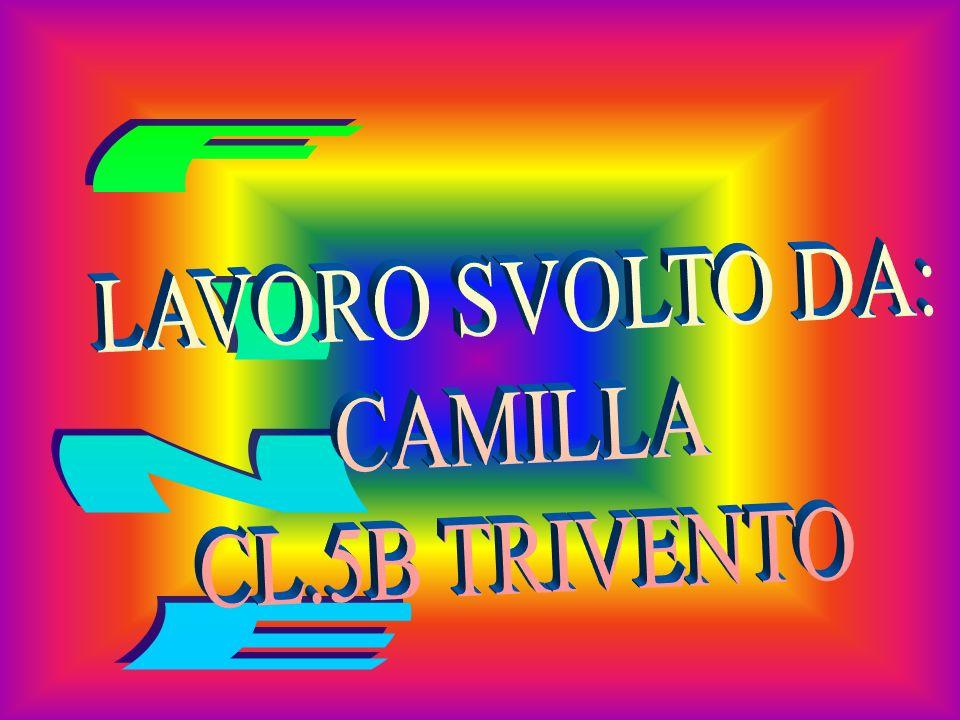 FINE LAVORO SVOLTO DA: CAMILLA CL.5B TRIVENTO