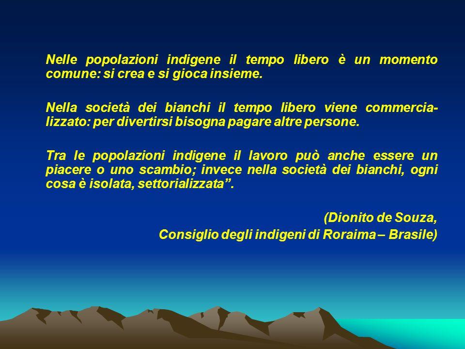 Consiglio degli indigeni di Roraima – Brasile)
