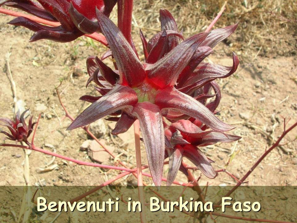 Benvenuti in Burkina Faso