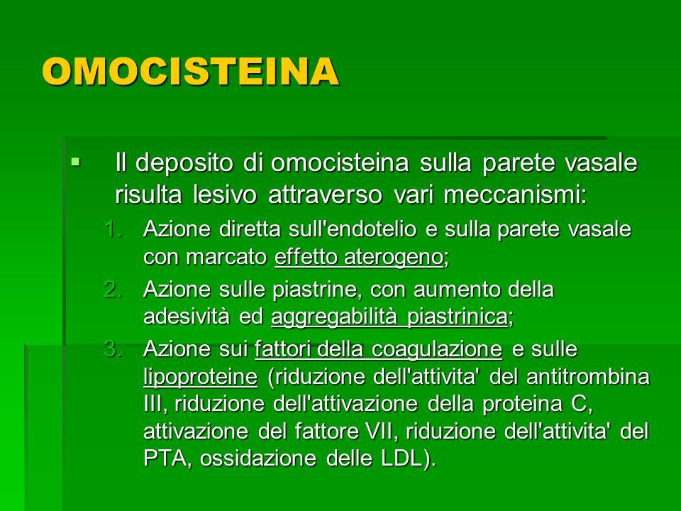 OMOCISTEINA Il deposito di omocisteina sulla parete vasale risulta lesivo attraverso vari meccanismi: