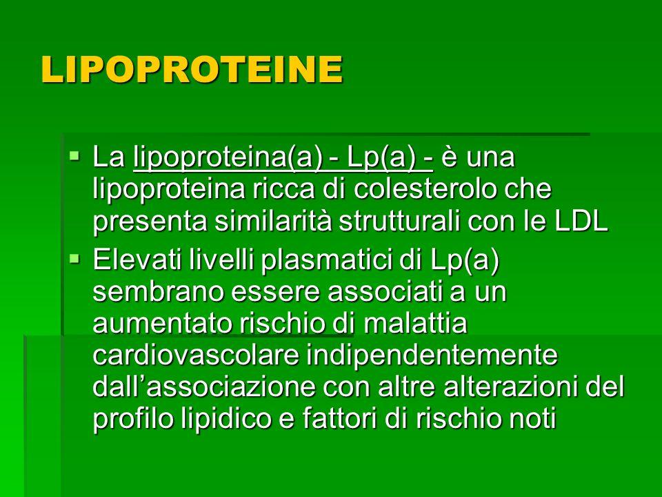 LIPOPROTEINE La lipoproteina(a) - Lp(a) - è una lipoproteina ricca di colesterolo che presenta similarità strutturali con le LDL.