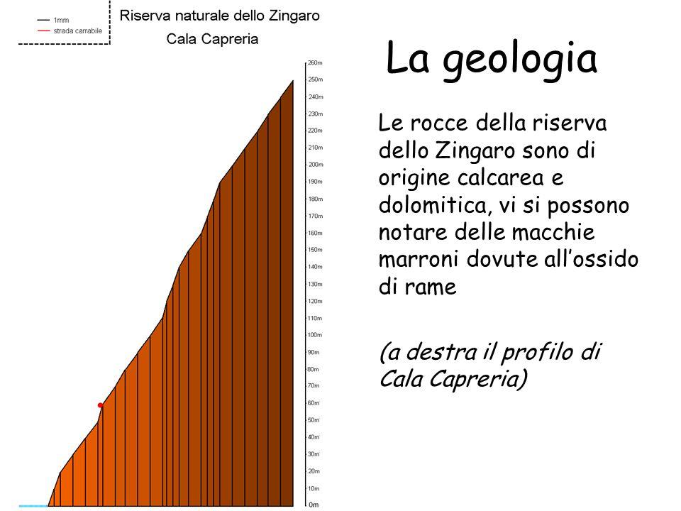 La geologia